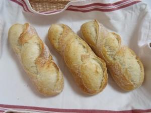 H26.1.26 フランスパン 1