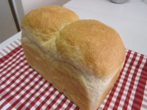 H26.9.25 酒種食パン 2