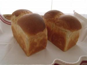 H28.3.26 ミニ食パン 1