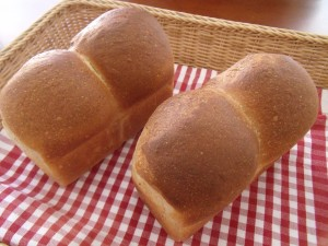 H30.1.20 中種食パン 1