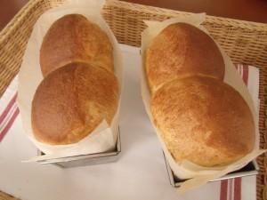 H30.1.23 中種食パン 1