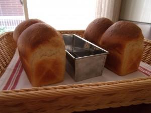 H30.1.23 中種食パン 2