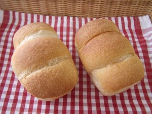 19.3.12 ミニ食パン 1